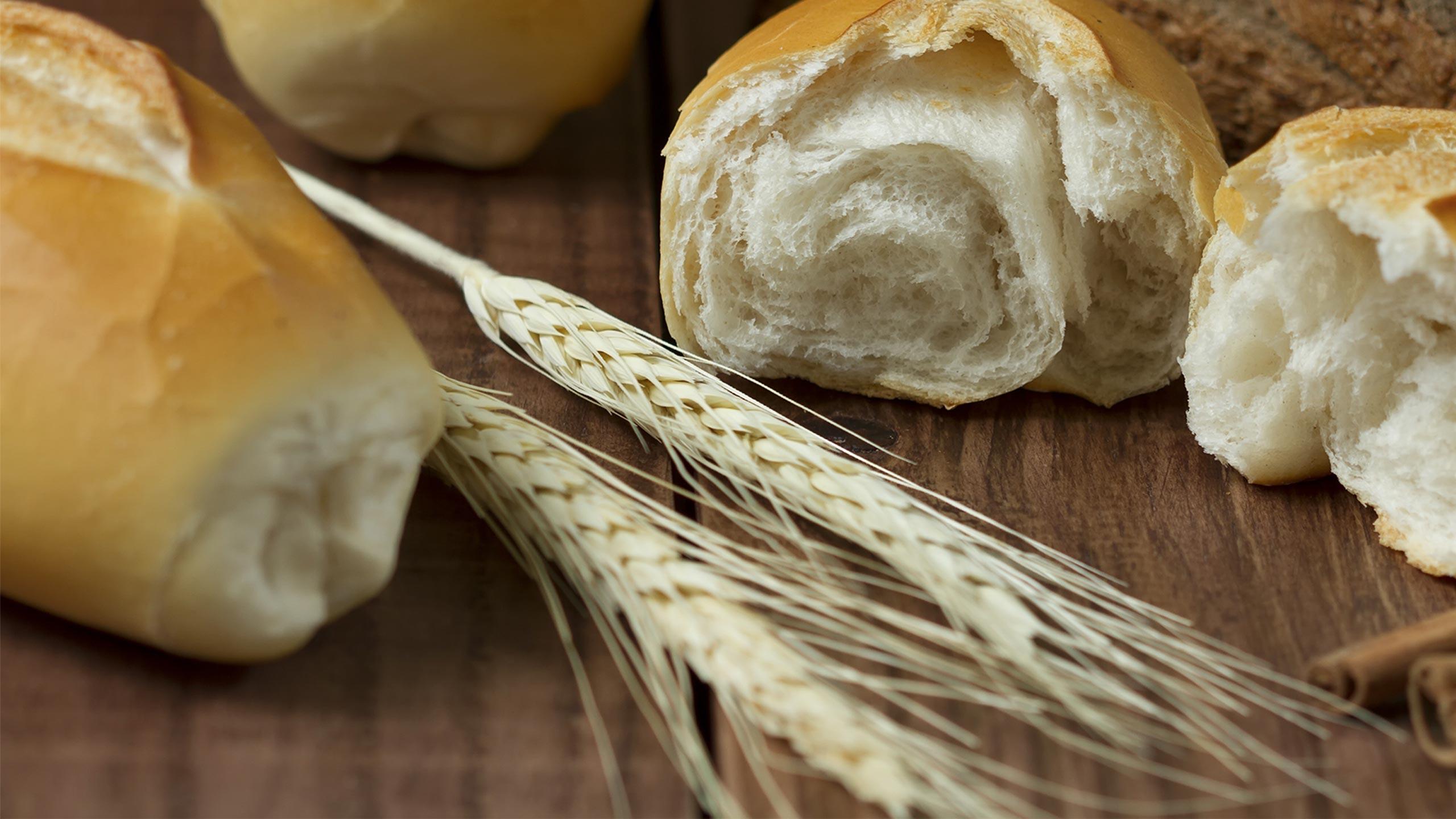 Roma nel piatto sulle tracce della ciriola il panino for Piatto tipico romano